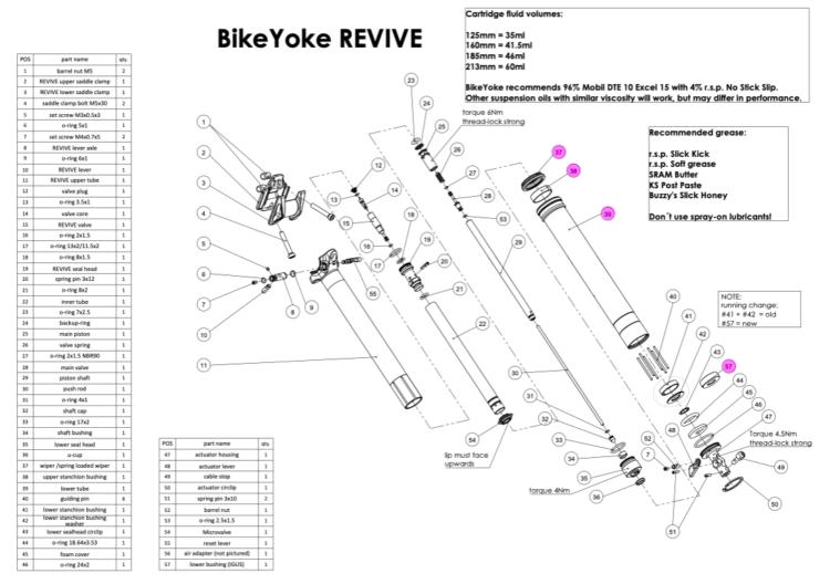 REVIVE expanded view DKIT